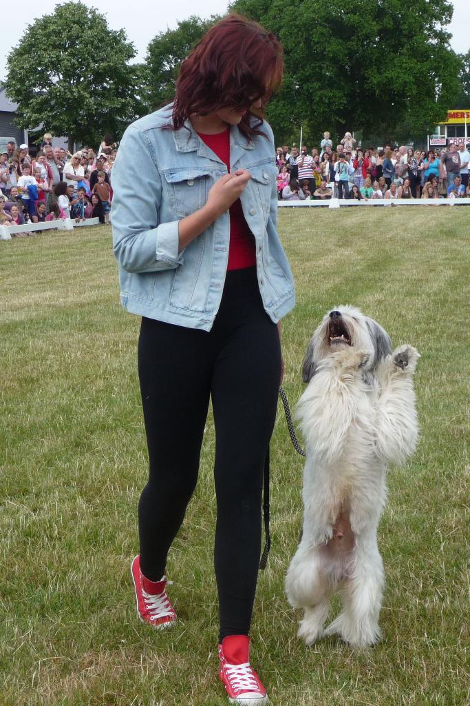 Ashleigh and Pudsey in action at The Pet Show. Hear them in episode 149 of DogCast Radio. Tags: Ashleigh and Pudsey Britain's Got Talent doggy dancing freestyle heelwork to music