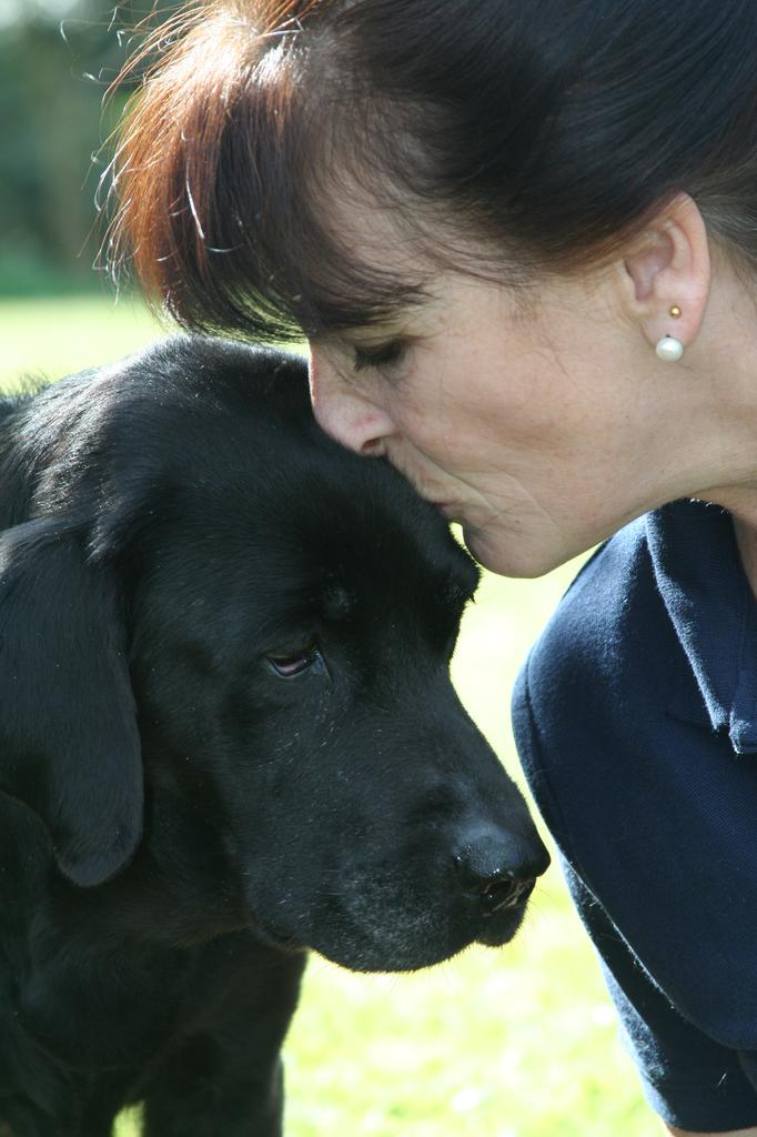 Julia Robertson founded Galen Myotherapy and made sure the therapy's approach demonstrates respect for the dog receiving treatment. Tags: Galen Galen Myotherapy