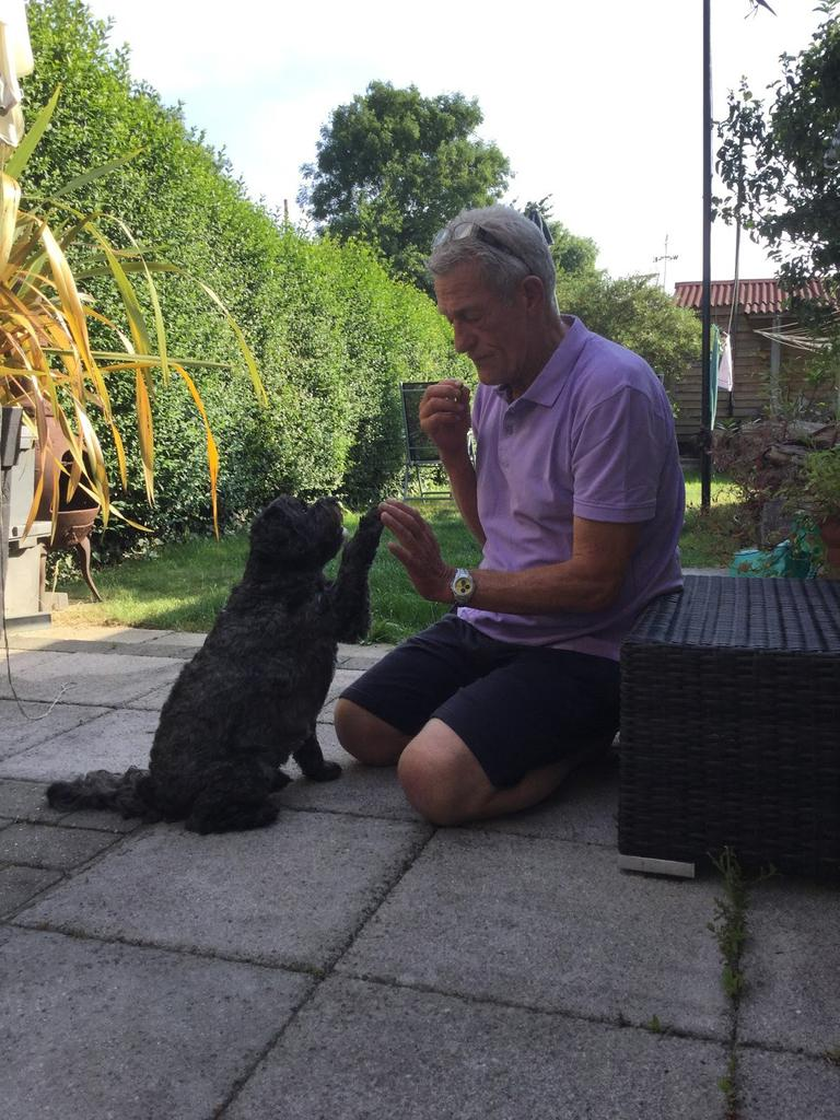 Andy Szasz and Teddy, the dog who woke him from a coma. Tags: award hero dog RSPCA