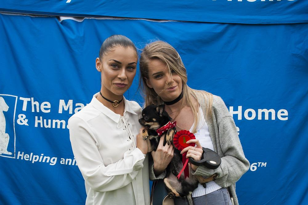 Paws at the ready as The Mayhew Animal Home is set to hold one of the best dog shows of the summer on Sunday July 16th. Photo Credit (Bonnie Baker) Cally Jane Beech helping to judge. Tags: Hounds on the Heath rescue dog The Mayhew Animal Home
