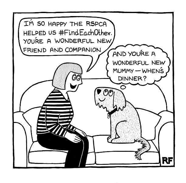 The RSPCA has teamed up with acclaimed cartoonist Rupert Fawcett - famed for his Off The Leash series - to spread the 'Adopt Don't Shop' message this National Dog Day (26 August). Tags: adopt dont shop national dog day RSPCA Rupert Fawcett