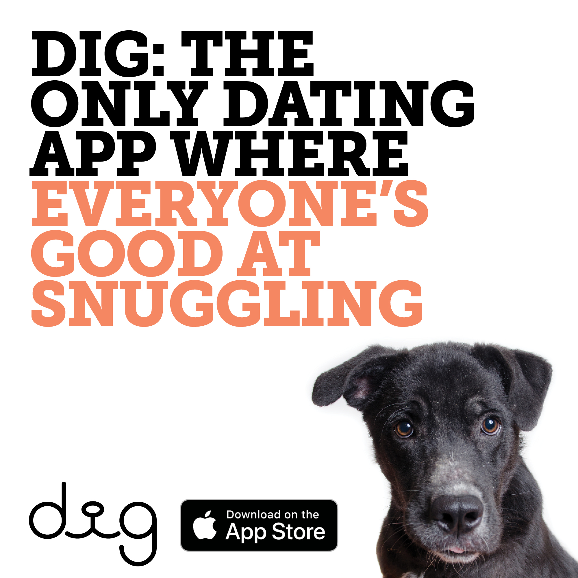 animal lover dating login