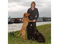 Cancer and Bio Detection Dogs and trainer Claire Guest