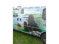 Newfie owners often end up with a van - this one is clearly for Newfoundlands!