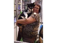 A gorgeous Husky gets a cuddle in Discover Dogs at Crufts 2011.
