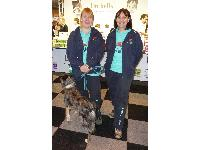 The Hertfordshire-based flyball team the High Flyers