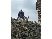 This Jack Russell Terrier was keeping watch over the castle.