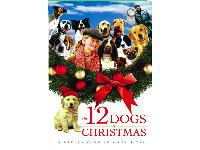 The Twelve Dogs of Christmas - a heartwarming movie.