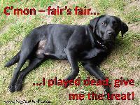 Buddy know's fair is fair.