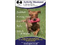 Try out a new dog sport at the APDT activity weekend in June.
