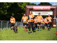 Runners at beginning the course with their dogs.