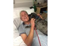 High-fiving rescue dog Teddy wins RSPCA honour for helping his owner out of a coma (picture 1)
