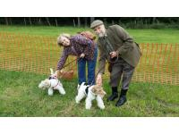 Tony and Joy with mother and son Wire Haired Fox Terriers Toby and Flo.