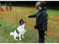 Lorraine's Akita was behaving beautifully at the show.